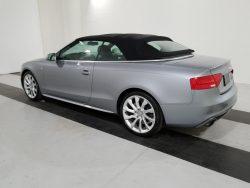 Audi Exterior
