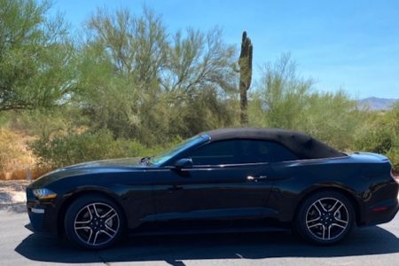 <span>SOLD</span> 2019 Ford Mustang Convertible Ecoboost Premium-Turbocharged full