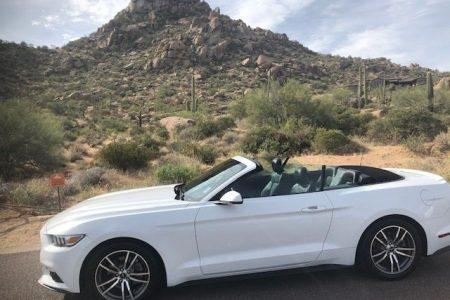 2016 Mustang 8
